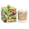 Olive Grove Soy Wax Candle