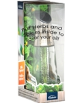 Herb and Spice Oil Infuser