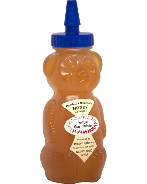 Pendell's Mountain Honey Bear